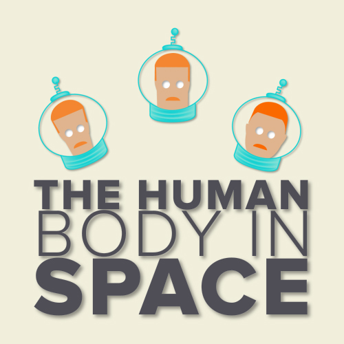 Human Body in Space Video Infographic