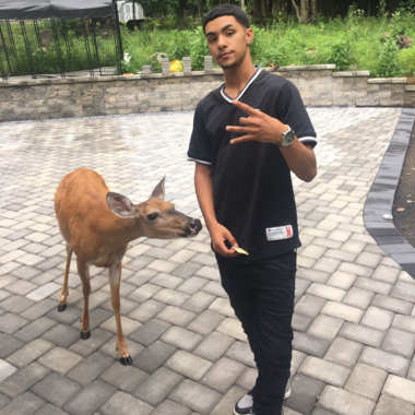 Money the Deer: Kid Keeps Deer Named 'Money' as a Pet, Feeds Him Crackers, They Bring Their Squad
